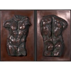 PLACAS PARED TORSO ADONIS